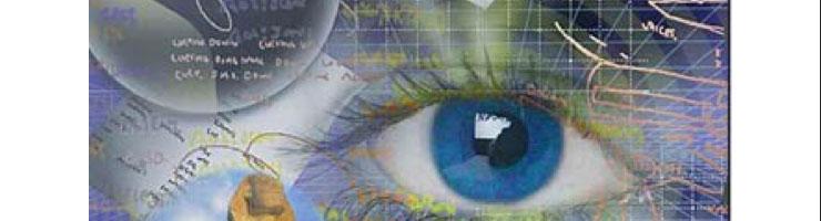 L'intuition en exercice : les interprétations