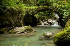 Méditation guidée : le pont