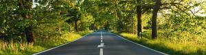 route-et-arbres