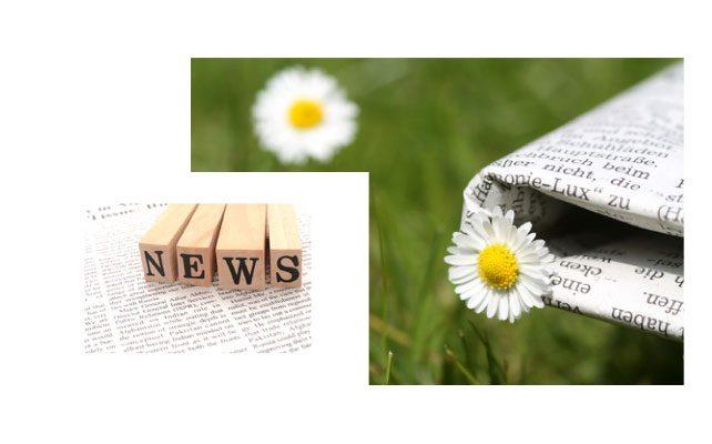 Gazette des chemins de l'intuition juin 2017