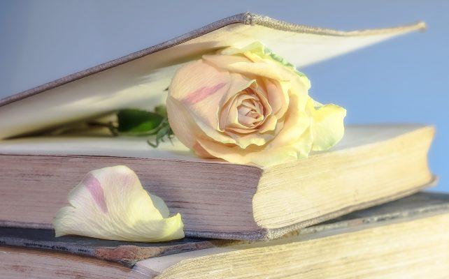 *STRESS* Des livres pour grandir et se transformer1