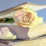 Les livres inspirants des chemins de l'intuition