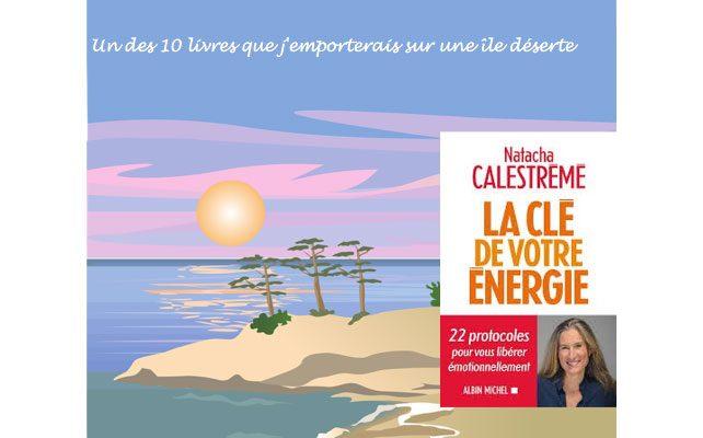 *STRESS* la clé de votre énergie par Natacha Calestrémé